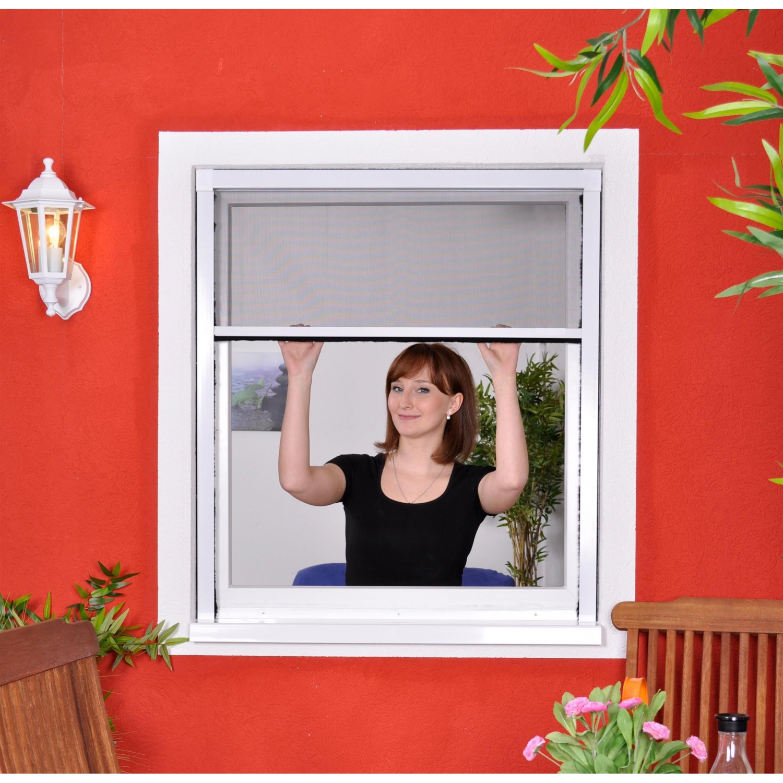 slim rollo fliegengitter f r fenster als rollo insektens. Black Bedroom Furniture Sets. Home Design Ideas