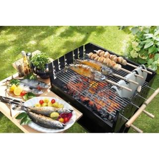 Steckerlfisch Stockfisch Barbecue Grillaufsatz Auch Für Stockbr